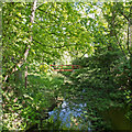 TL7638 : River Colne, from Stone Bridge, Great Yeldham by Roger Jones