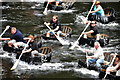 SN1942 : Coracle Racing on the Teifi by Dave Price