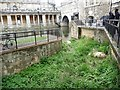 ST7564 : Swans' nest, above Pulteney Weir, Bath by Christine Johnstone