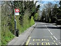 TQ1169 : Bus Stop on Staines Road East by David Dixon