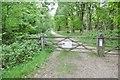 SU3409 : Deerleap Inclosure, gates by Mike Faherty