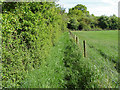SU9071 : Footpath, Winkfield by Alan Hunt