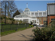 TQ3473 : The Conservatory, Horniman Museum by Richard Sutcliffe