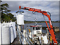 V6963 : Coongar Lass offloading bags of washed mussels by Martin Southwood