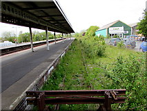 SN1916 : Weeds cover a long disused line of the north side of Whitland railway station by Jaggery