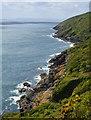 SX2150 : Coast east of Polperro, Cornwall by Edmund Shaw