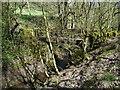 SE0722 : Footbridge over Maple Dean Clough, Norland / Greetland by Humphrey Bolton