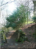 SE0722 : The junction of Elland FP2 with a path through the woodland, Greetland by Humphrey Bolton