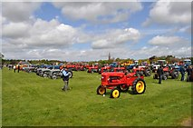 NT7233 : Vintage Tractors by Robert Struthers