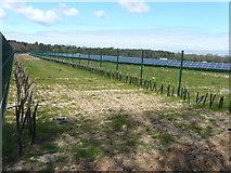 TR1958 : Littlebourne solar farm by John Baker