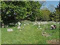 SU9072 : St Mary's graveyard, Winkfield by Alan Hunt