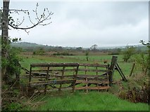 NY2436 : Field gate, south-west of Uldale by Christine Johnstone