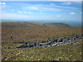 NY7821 : Ruined sheepfold, Burton Fell by Karl and Ali