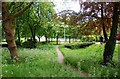 SP1579 : Footpath through the Golden Jubilee Gardens, Solihull by P L Chadwick