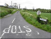 H7447 : Tannaghlane Road, Tannaghlane / Derrygooly by Kenneth  Allen