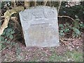SN8552 : Headstone in the shrub by Bill Nicholls