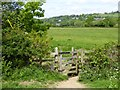 SS9226 : Kissing gate on Exe Valley Way by David Smith