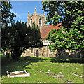 TL2256 : Abbotsley: St Margaret by John Sutton