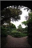 TQ3303 : Tunnel into Sussex Square gardens by Matt Harrop