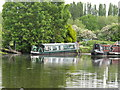 TQ0588 : Narrowboat Branta canadensis in Harefield Marina by David Hawgood
