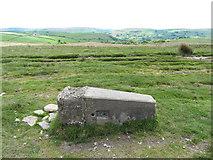 ST1292 : Fallen trig point on Mynydd Eglwysilan by Gareth James