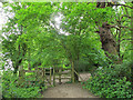 SU9972 : Kissing gate in Coopers Hill woods by Stephen Craven