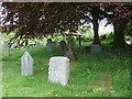 SS6243 : St Thomas, Kentisbury: churchyard (d) by Basher Eyre