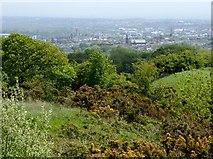 SD7109 : Bolton from Horrocks Wood by Philip Platt