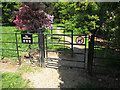 TQ0181 : Kissing gate with wheelchair access, Langley Park arboretum by David Hawgood
