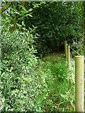 SE0722 : Sowerby Bridge FP148 (16) by Humphrey Bolton