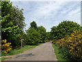 TM0979 : Union Lane & footpath by Adrian Cable