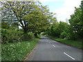 NZ3344 : Elemore Lane by JThomas