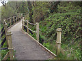 SS7883 : Wales Coast Path boardwalk by the River Kenfig/Afon Cynffig by eswales