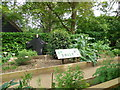 SY5784 : Herb Garden - Abbotsbury by Paul Gillett