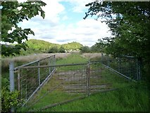 SH5639 : Track heading east to the A4971 by Christine Johnstone