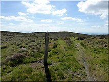 SD6512 : Way marker near Adam Hill by Philip Platt