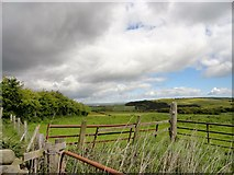 NZ0757 : View north from Wittonstall by Robert Graham
