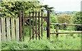 J3269 : Old gate, Clement Wilson Park, Belfast (June 2015) by Albert Bridge