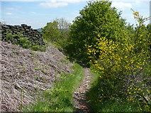 SE0722 : Dye House Lane (5), Norland by Humphrey Bolton