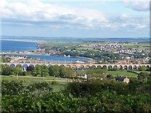 NT9953 : Berwick's three bridges by David Chatterton