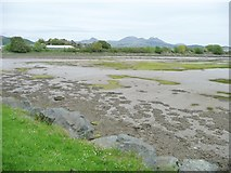 SH5738 : The northern end of Llyn Bach, at low tide by Christine Johnstone