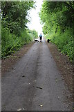 ST4516 : Disused road near Holy Tree Cross by Nick Chipchase