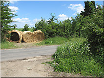 TM1476 : Straw bales beside Rectory Road by Evelyn Simak