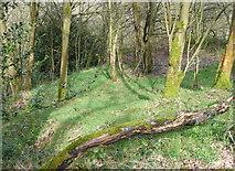 SE0722 : Elland FP80 (E11) in woodland, Greetland by Humphrey Bolton