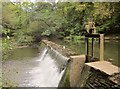 ST6376 : Weir on the Frome by Derek Harper
