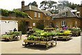 SP3745 : The Plant Centre at Upton House by Steve Daniels