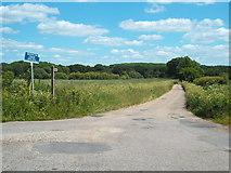 TQ6596 : Buckwyns Chase, near Billericay by Malc McDonald