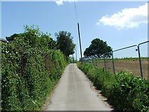 TR3156 : Lane leading to Grove Manor, Woodnesborough by Chris Whippet