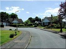 TR3156 : Woodland Way, Woodnesborough by Chris Whippet