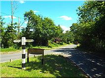 TL6400 : Fryerning Lane, near Ingatestone by Malc McDonald